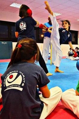 Accademia Karate Casentino - Settore giovanile (2) (002)